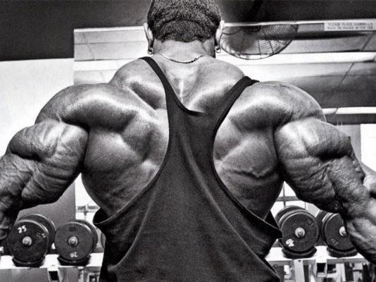 bulking-guide-metabolism-muscle-mass