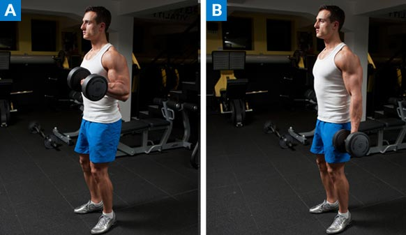 dumbbell-bicep-curl1