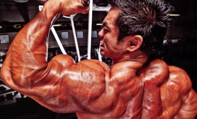 Top 10 Bicep Exercises Tips Fitness
